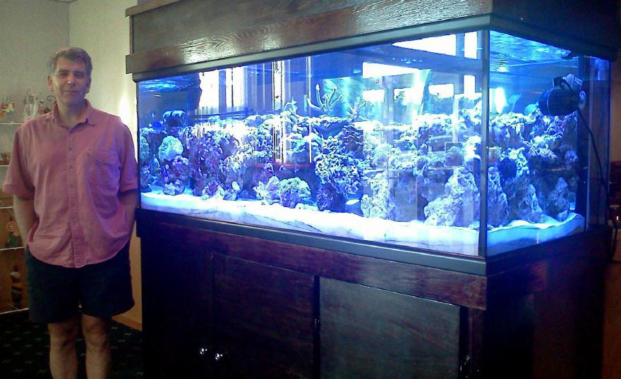 HUGE fish tank | Henniemavis Runs Rampant