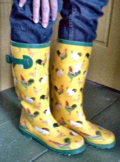 ChickenBoots