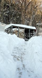 SnowWoodshedShovel